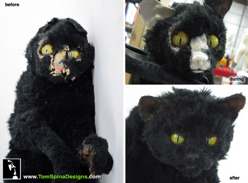Doctor Who prop restoration of animatronic cat puppet
