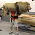 wearable life size lion costume puppet