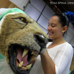 lion fur work