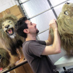 Tom hair punching ventilating lion puppet