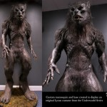 Lycan Underworld Movie Costume Custom Display