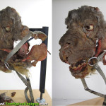 original Luke Skywalker Tauntaun movie prop during restoration